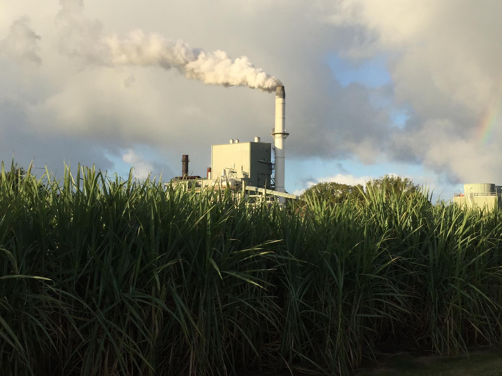 Condong Sugar Mill