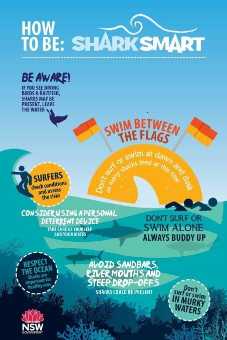 NSW Shark Smart Program