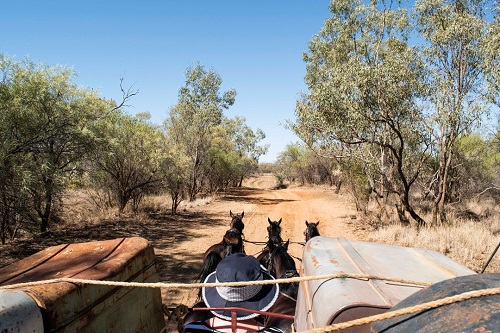 obb and co Longreach Outback Pioneers Experience