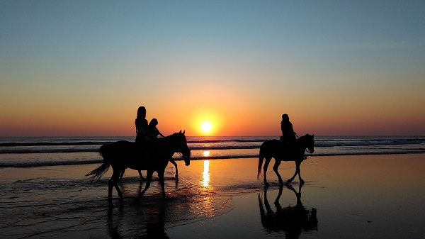 Byron Bay sunset horse ride