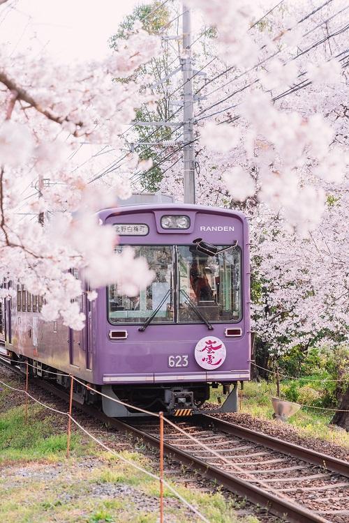 Train Travel Blog