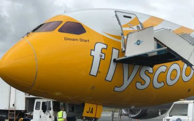 Scoot Airlines dreamliner fleet, Scoot Airlines low cost fares