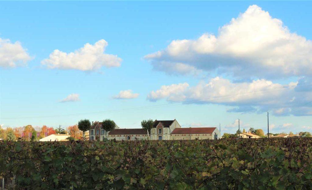 Chateau and Vineyard