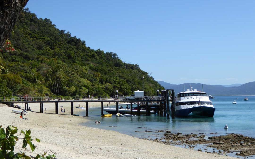 Fitzroy Island Holiday Things To Do