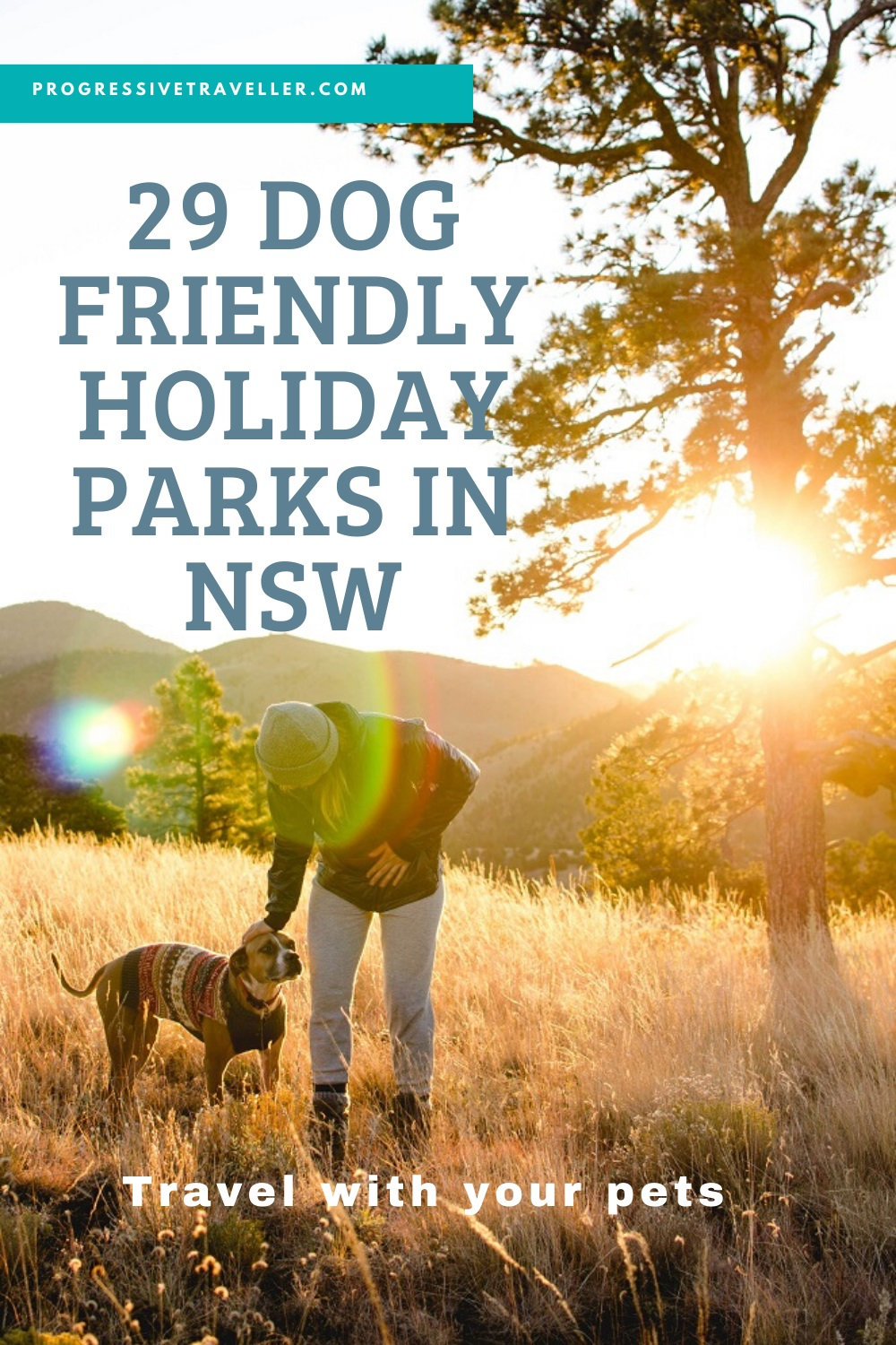 Dog-Friendly Holiday Parks in NSW