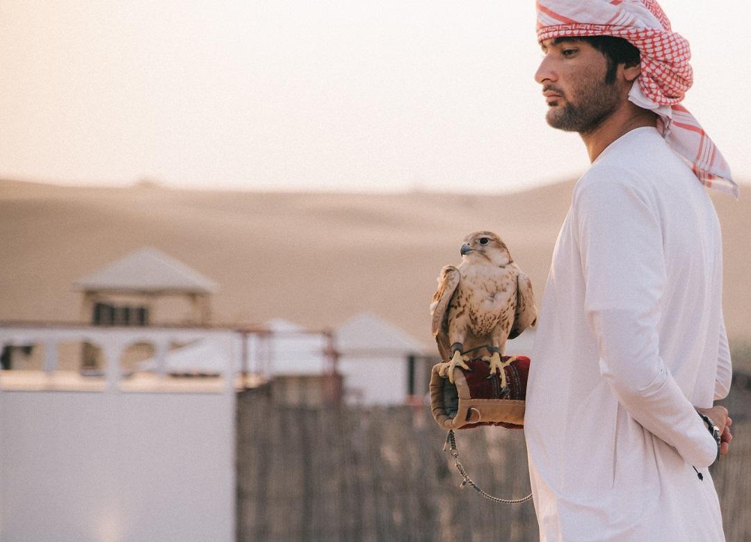 Dubai Falconry Experience